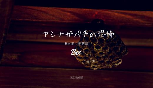 蜂の巣を駆除した後に刺された恐怖の体験談 アシナガバチは足元に気を付けて
